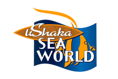 hcp pump south africa clients ushaka marine world